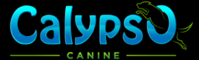 Calypso Canine West Palm Beach Dog Training